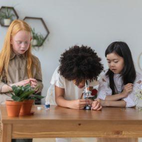 Children looking through a mini microsope